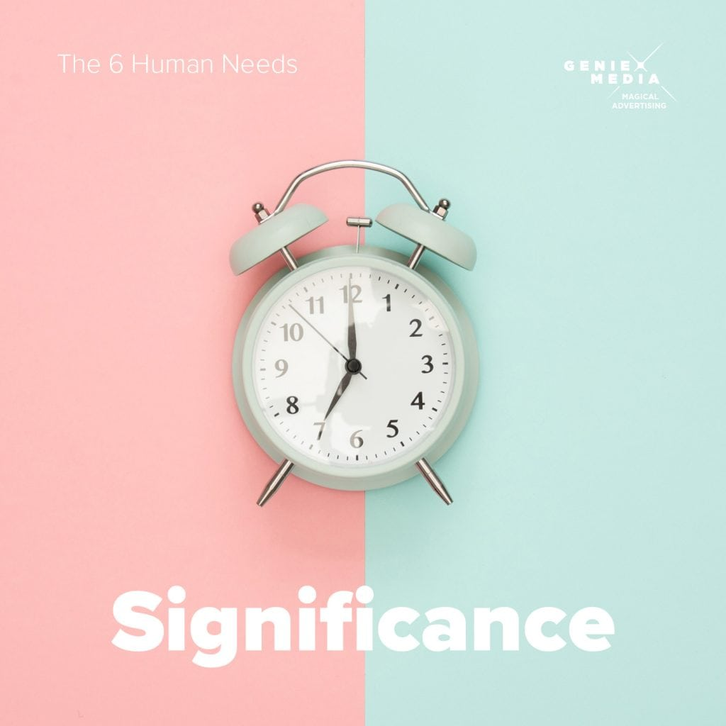 The 6 human needs - significance