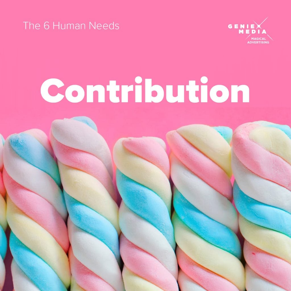 The 6 human needs - contribution